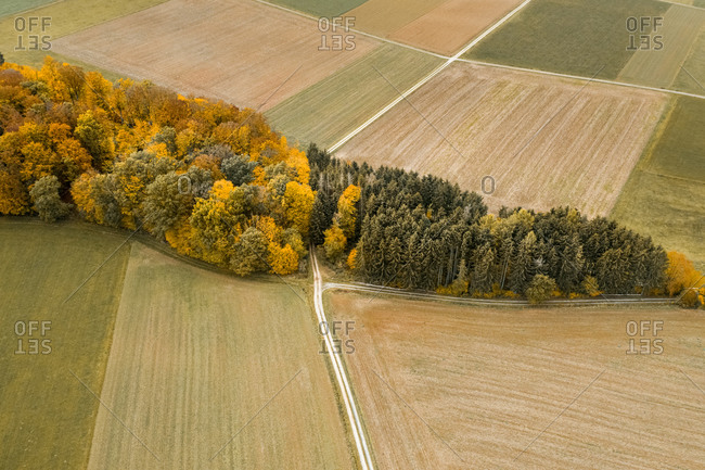 Aerial view of a colorful forest  and fields in autumn, Hessia, Germany.