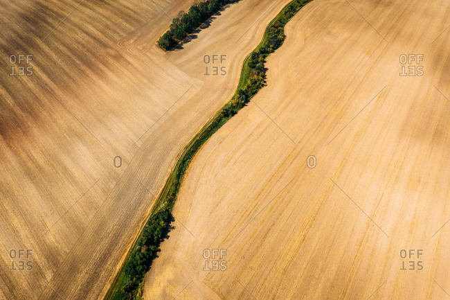 Abstract aerial view of mowed field divided by trees in Germany.