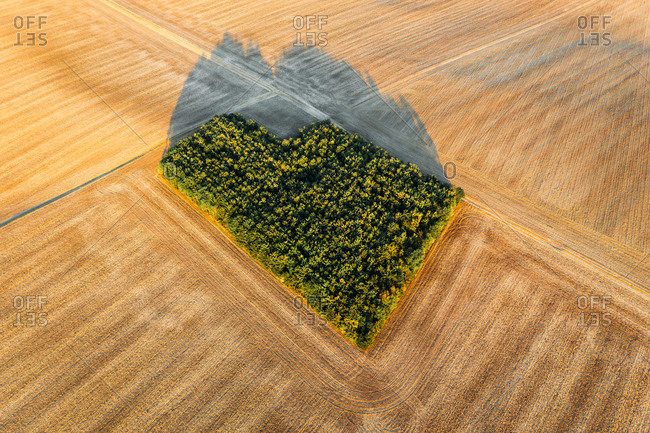 Abstract aerial view of mowed field with green square tree patch in Oßmannstedt, Thüringen, Germany.
