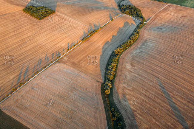 Abstract aerial view of mowed field with green square tree patch in Ossmannstedt, Thuringen, Germany.