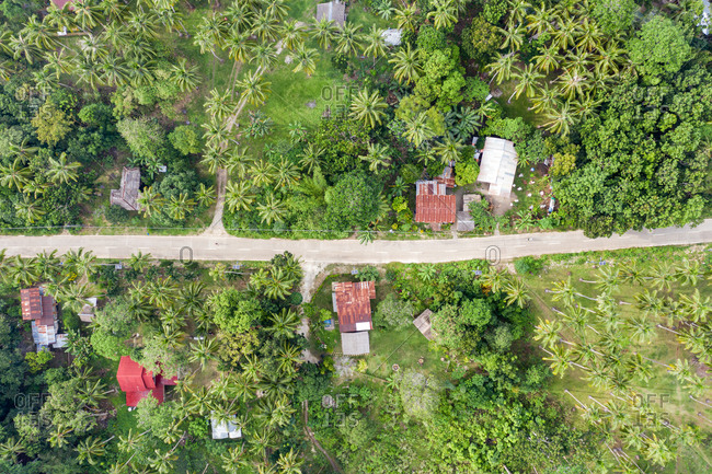 Aerial view of  a street with houses, Panglao, Bohol, Philippines