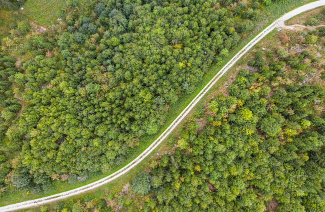 Aerial view of  black forest path, Black Forest, Germany.