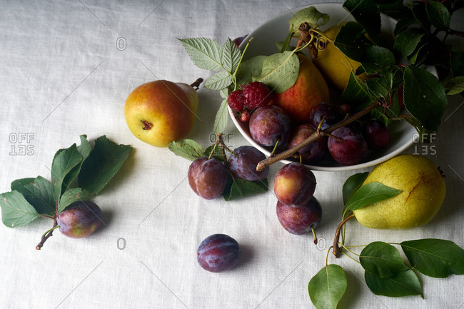 Overhead image of organic fruits - plums, pears and apples arranged on textile background