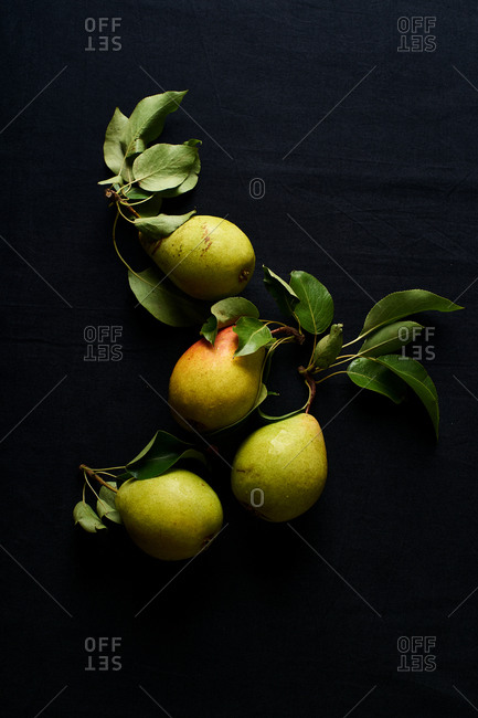 Overhead composition on dark background with ripe organic pears