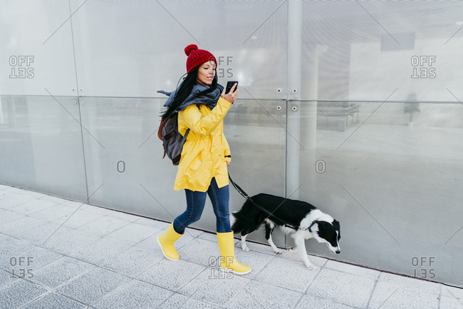 Woman using smart phone while walking with dog on footpath by wall during autumn