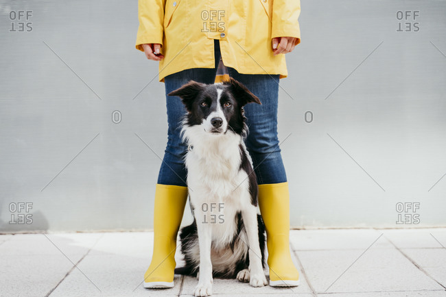 Woman wearing yellow raincoat standing with dog during autumn