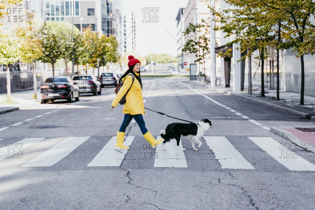 Woman walking with dog on pedestrian crossing during sunny day