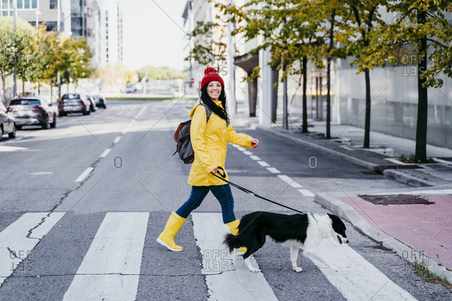 Smiling woman walking with dog on pedestrian crossing during sunny day