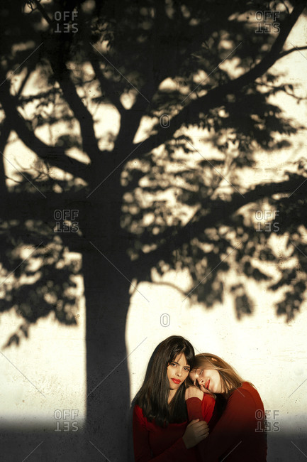 Young woman leaning on friend's shoulder by standing against tree shadow