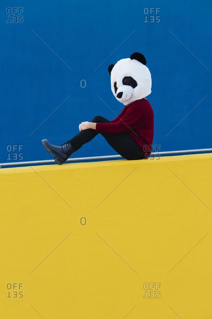 Female wearing panda mask while sitting against blue wall