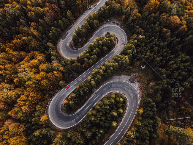 Winding road in a lush autumn forest viewed from above