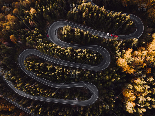 Drone shot of a winding road through a dense autumn forest