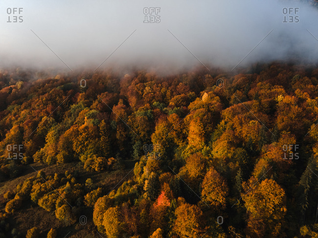 Low lying clouds over beautiful fall foliage in the mountains