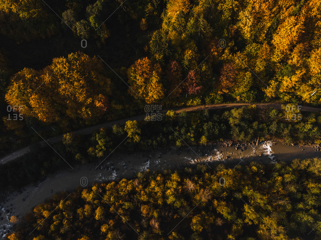 Drone shot over road and river running though beautiful fall forest