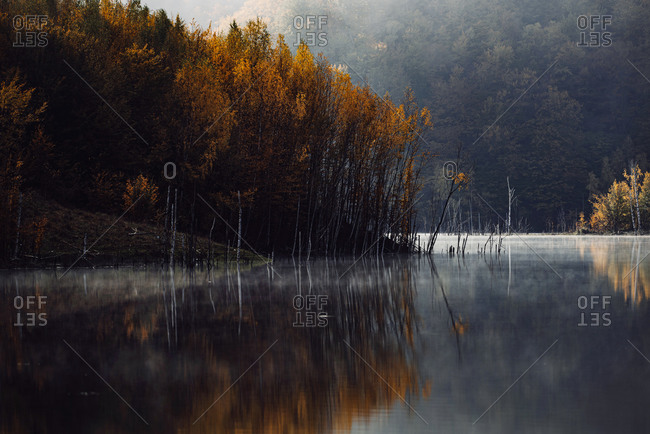 Colorful autumn trees reflecting in a lake in autumn
