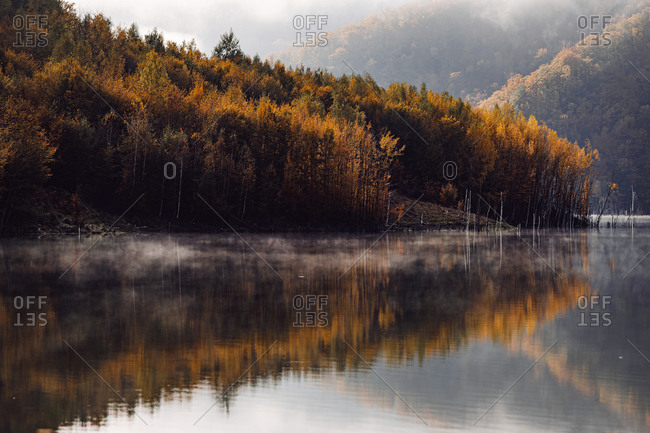Autumn forest reflecting in a mountainside lake