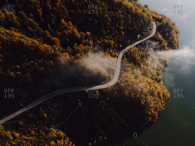 Drone shot over dense lakeside forest with winding road
