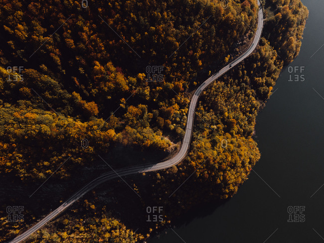 Winding road in a dense lakeside forest viewed from above