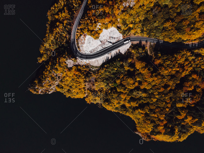 Aerial view over winding road in a dense lakeside forest viewed from above