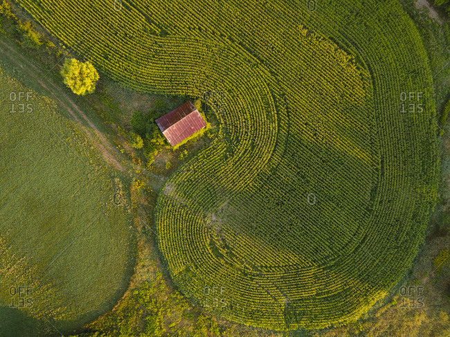 Overhead view of a barn surrounded by cornfields in Panton, Vermont