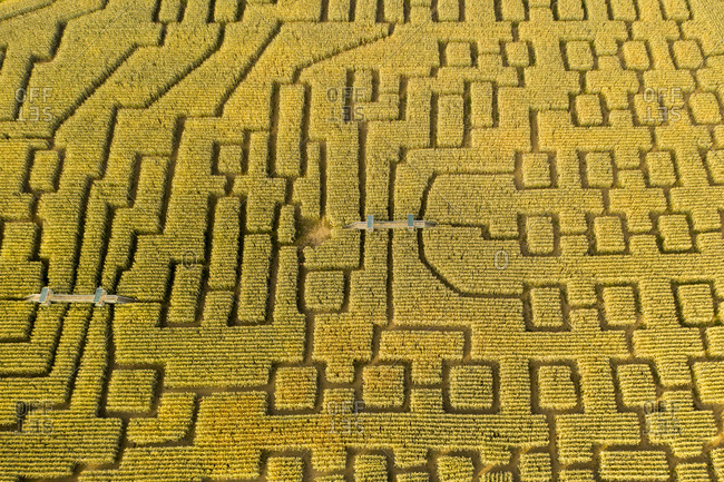 Aerial view over the Vermont Corn Maze in North Danville, Vermont