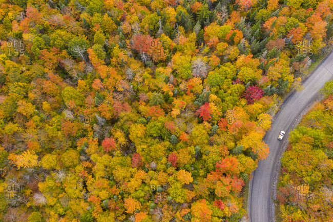 Car driving on a rural road leading through fall foliage in New Haven, Vermont