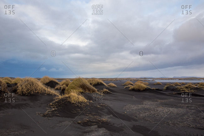 Windswept black sand dunes of stokksnes, iceland
