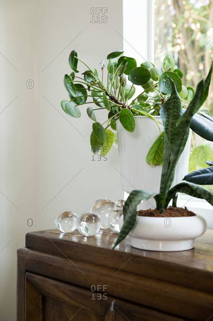 Decorative glass fruit on a cabinet with plants in front of a window