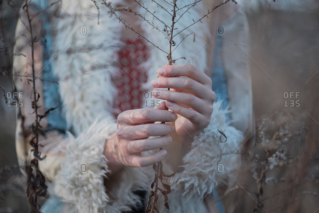 Hands holding dry faded grass stem. beautiful female hands, autu