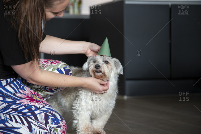 A woman adjusts the party hat of her dog
