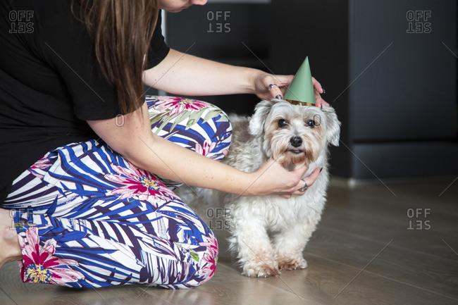 A dog mom adjusts her birthday boys hat