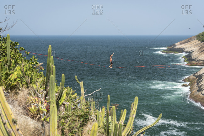 Beautiful view to highliner on ocean front landscape with cactus