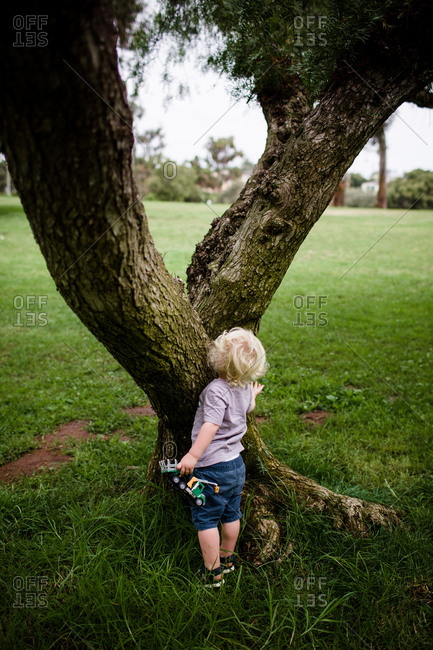 Two year old hiding behind tree