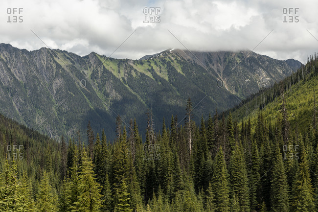 Mountain ridge covered by green forest under cloudy sky in summer