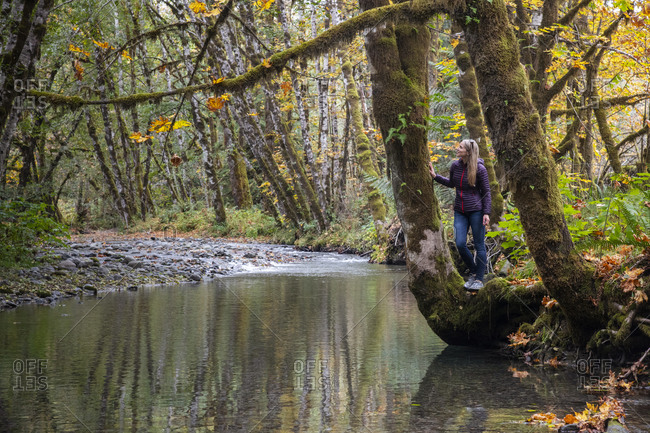 Woman standing on river bank admiring fall colors in rural Vancouver Island, British Columbia