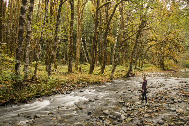 Woman standing on a rocky river bank admiring fall foliage in rural Vancouver Island, British Columbia