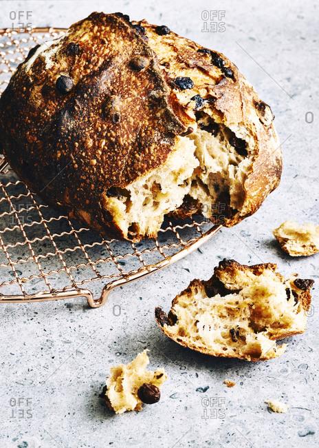 Homemade raisin sourdough bread on a copper cooling rack