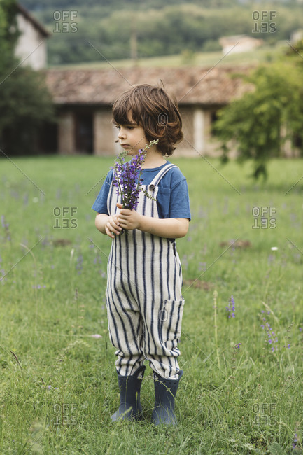 Boy looking away while standing on grass in meadow