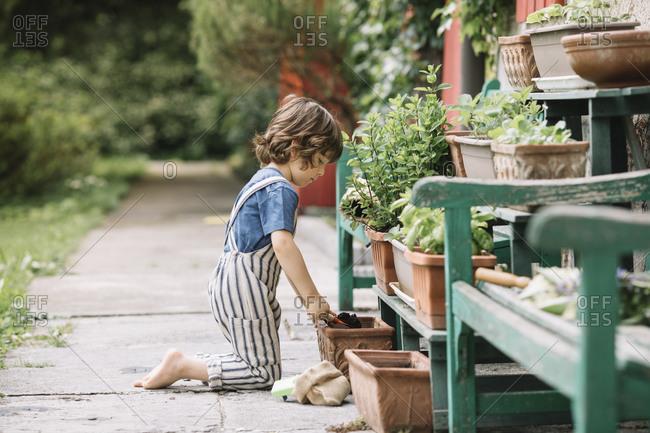 Boy kneeling while gardening plant at backyard