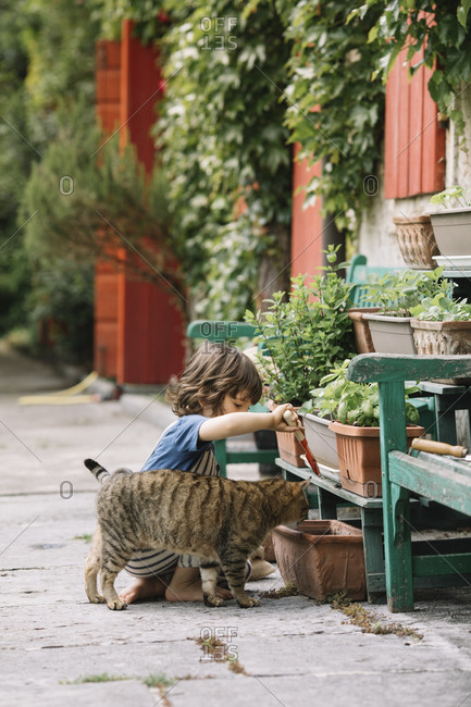 Boy planting plant while sitting by cat at backyard