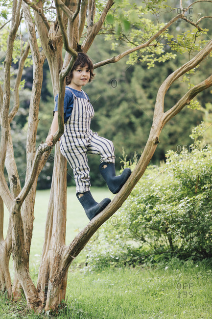 Boy smiling while standing on branch of tree in garden