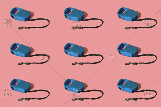 Retractable pet leashes on colored background