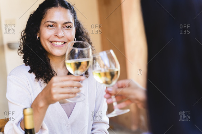 Women toasting wineglass while having lunch at back yard