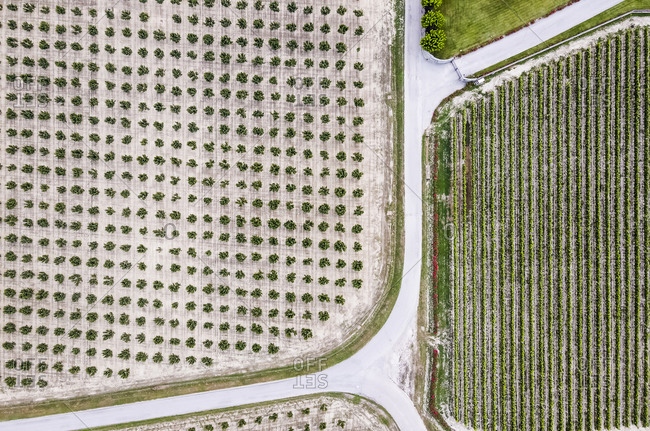 Drone view of country road stretching between agricultural fields