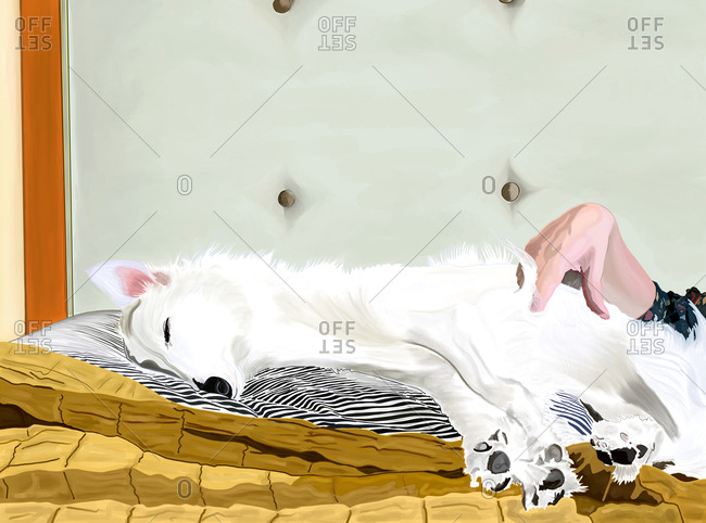 Fluffy white dog sleeping on pillow