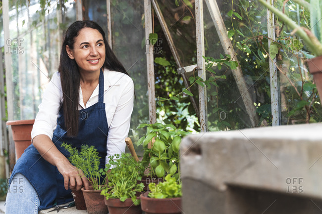Smiling woman looking away while sitting in garden shed