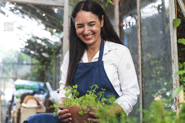 Mature woman holding plant while sitting in garden shed