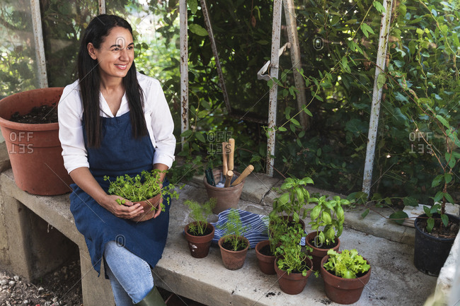 Smiling mature woman holding plant looking away while sitting in garden shed