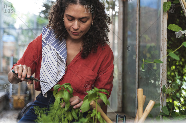 Mature woman cutting plant while sitting in garden shed