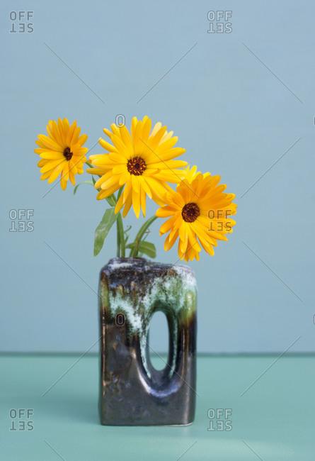 Yellow marigolds blooming in vase
